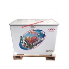 Tủ đông TRT International LY350LD