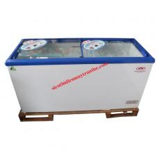 Tủ đông TRT International Inverter LY600GL